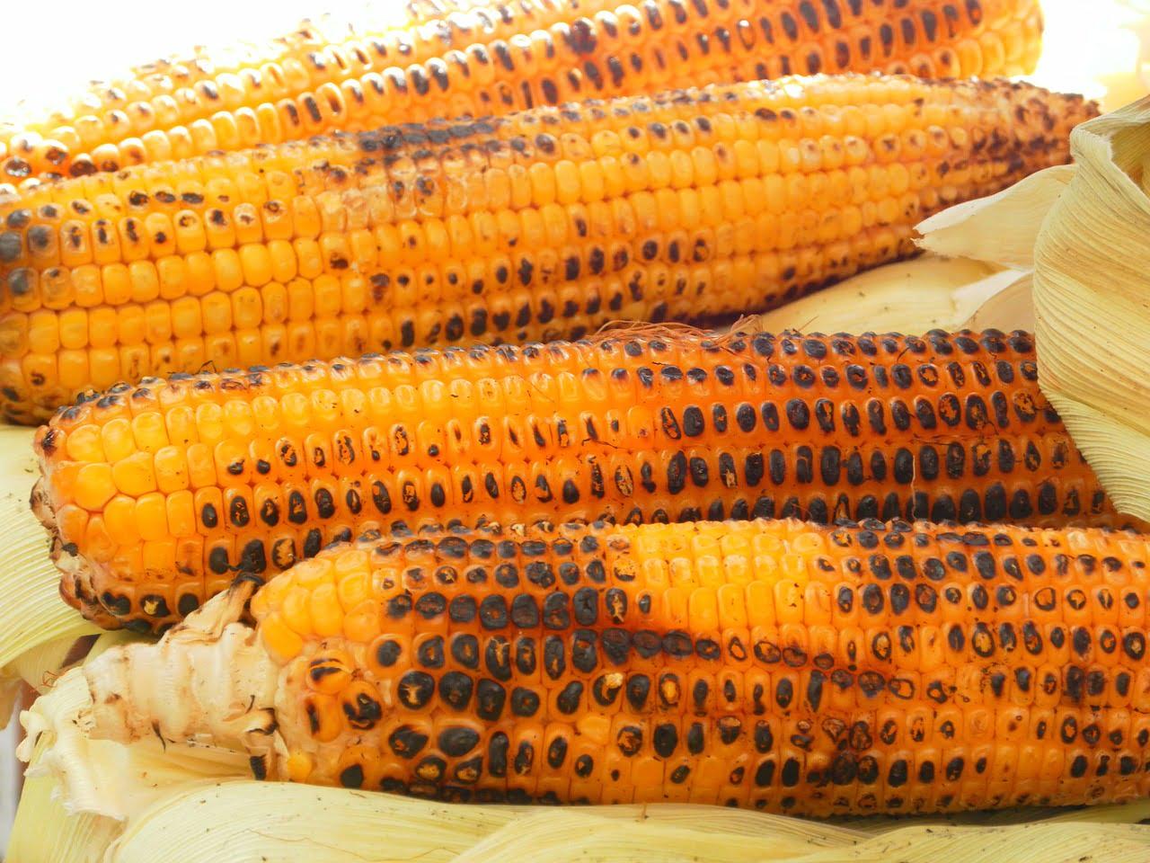Przepis na grillowaną kukurydzę