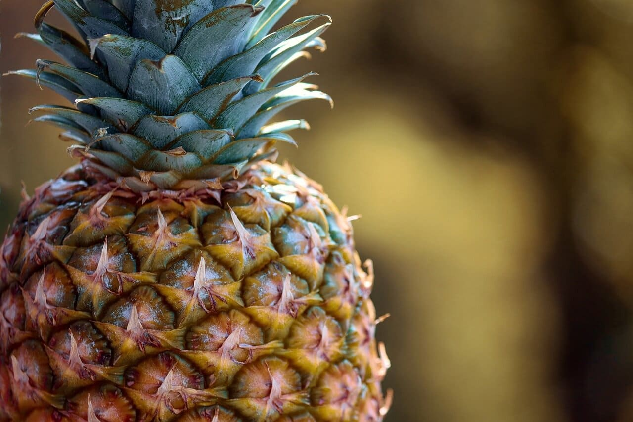 Ananas z grilla – przepis.