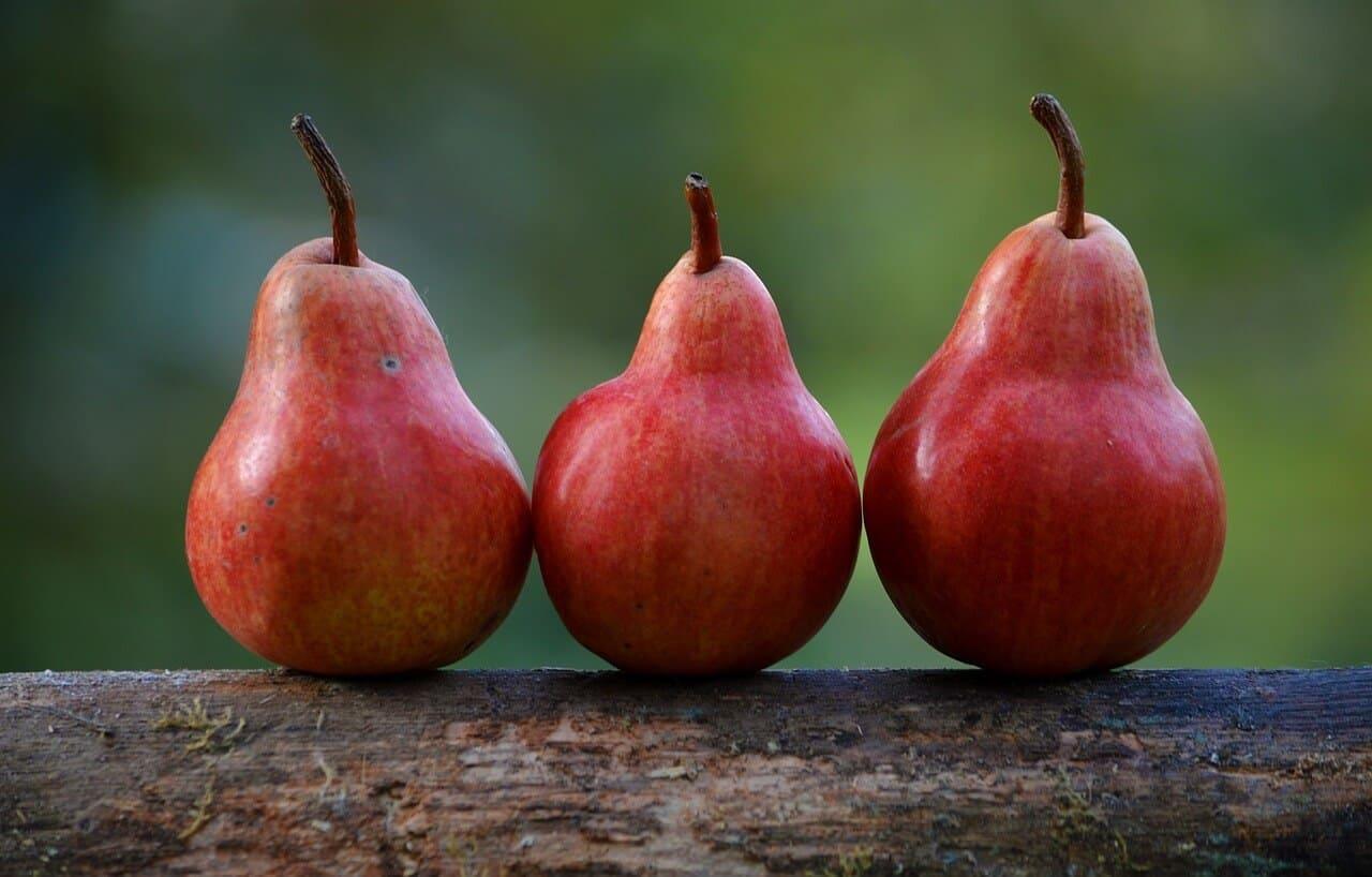 Jak przygotować owoce z grilla – przepisy.